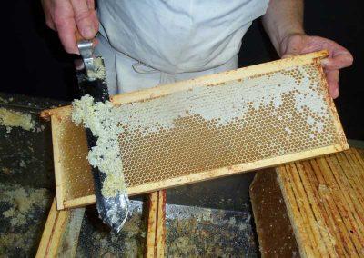 extraction du miel d'acacia