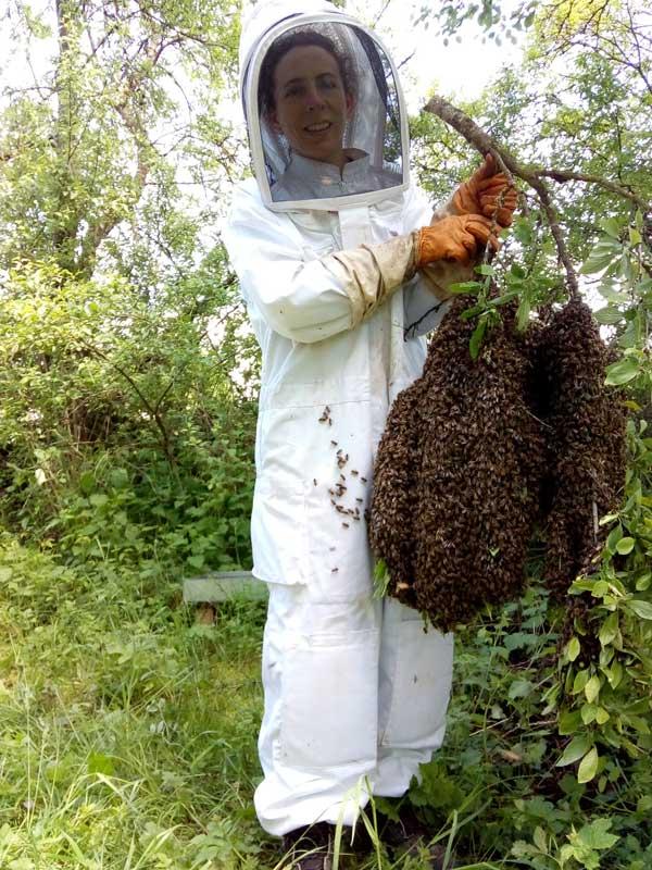 Nathalie Accili apicultrice dans les Vosges