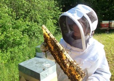 galerie apicultrice Miels et Saveurs des Vosges