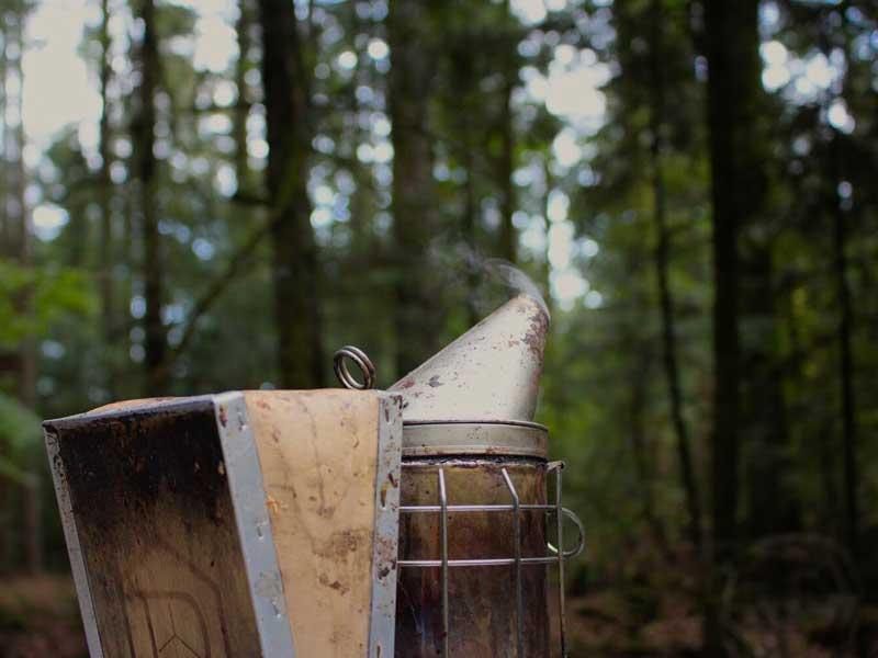 L'enfumoir, un outil indispensable aux apiculteurs