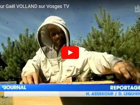 Gaël Volland sur Vosges TV
